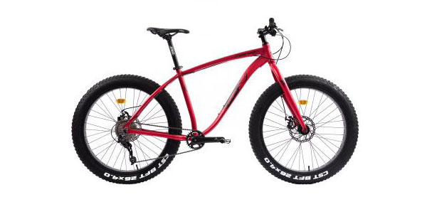 Bicicleta mountain bike Pegas Suprem