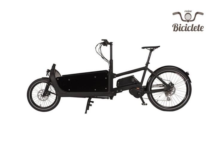 Review bicicletă electrică Bizze Cargo Premium